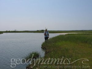 surveyor in a marsh
