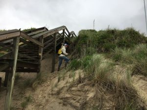 surveyor gets GPS data on beach dune